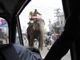 India, traffico promiscuo